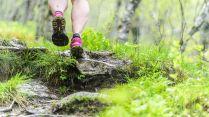 Løping i Åmotan